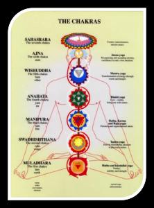 Chakras con leyenda. Kinesiologia Integral