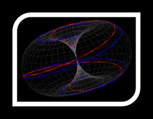 toroidal Kinesiologia Integral